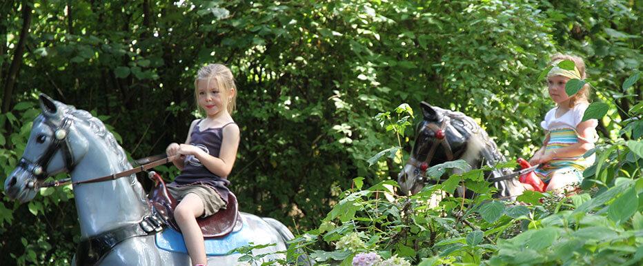 Rij als een echte cowboy of -girl op één van onze paarden in volle galop! Geniet van een avontuurlijke rit door de natuur op de rug van je trouwe viervoeter.