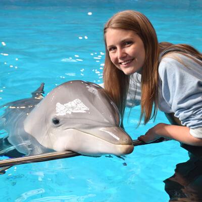 Ga in het water met dolfijnen in dit exclusieve programma bij Boudewijn Seapark Brugge!