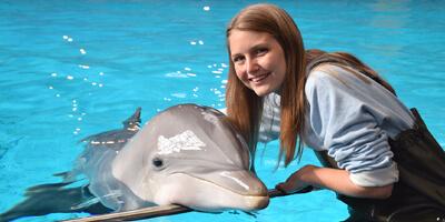 Afbeelding bij Dans l'eau avec des dauphins