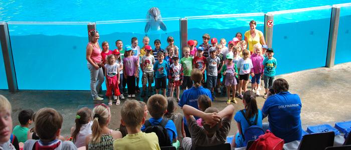 Ga samen met je klas op de foto met een dolfijn! Dit leuk souvenir krijgen jullie na de educatieve sessie in Boudewijn Seapark.