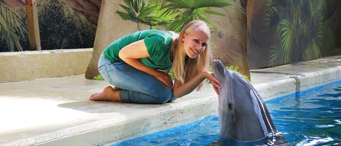 Maak je dromen waar en laat een foto nemen van jou en een dolfijn of een zeeleeuw!