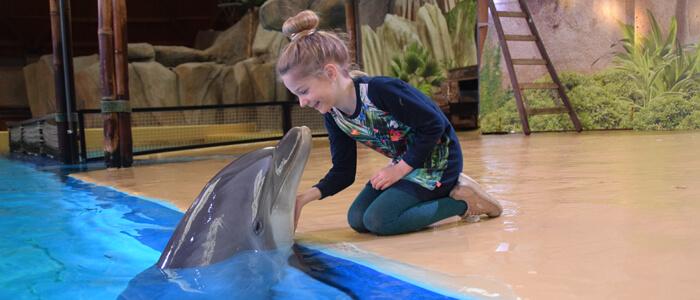 Maak een fotoreeks van jou met onze dolfijnen en maak zo je dromen waar!