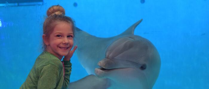 Maak een fotoreportage van jou met onze dolfijnen en maak zo je dromen waar!