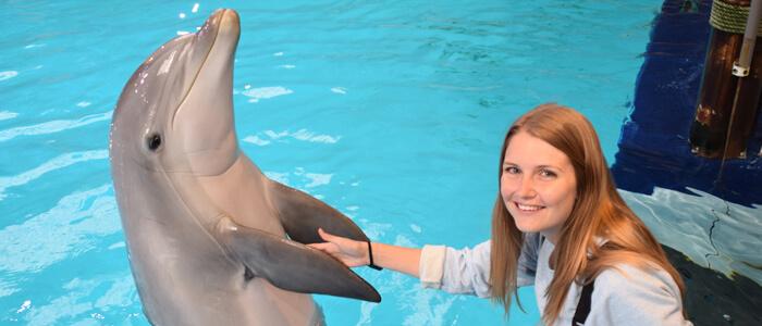 Ontmoet onze dolfijnen van zeer dichtbij! Reserveer nu je unieke ontmoeting. Let op, dit is niet zwemmen met dolfijnen.