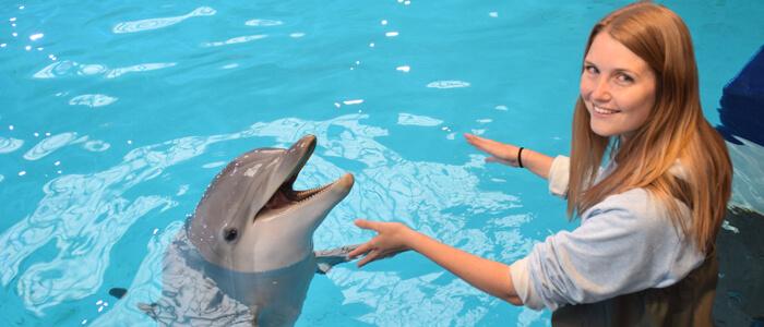 zwemmen met dolfijnen?