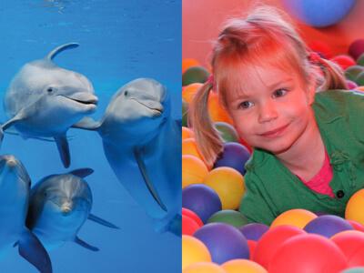 Combineer uren speelplezier met een spetterende dolfijnenshow bij Boudewijn Seapark!