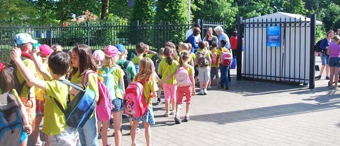 Beleef een dolfijne schoolreis in Boudewijn Seapark!