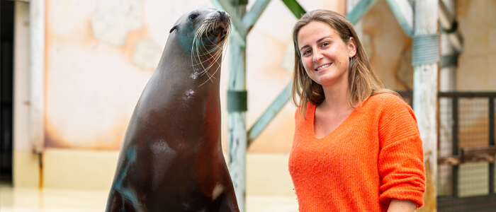 Ga op de foto met een zeeleeuw of dolfijn na elke show bij Boudewijn Seapark!