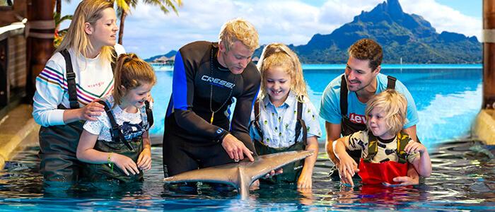 Ontmoet de dolfijnen van dichtbij bij Boudewijn Seapark Brugge!